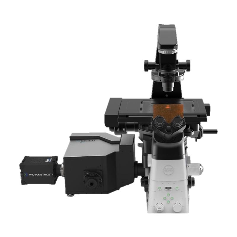 Nikon Crest X-Light V2 LFOV Konfokal mikroskop